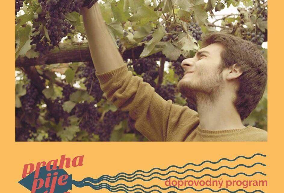 """ჩეხეთში, ქალაქ პრაღაში გაიმართება ფილმის """"ღვინის ნულოვანი მერიდიანი"""" – ს ჩვენება"""